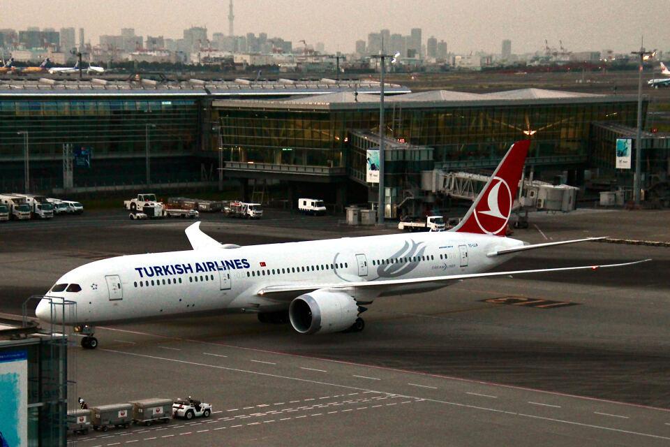 やまモンさんのターキッシュ・エアラインズ Boeing 787-9 (TC-LLN) 航空フォト