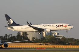 sky-spotterさんが、成田国際空港で撮影した山東航空 737-85Nの航空フォト(飛行機 写真・画像)
