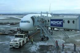 メンチカツさんが、新千歳空港で撮影した日本航空 777-346の航空フォト(飛行機 写真・画像)