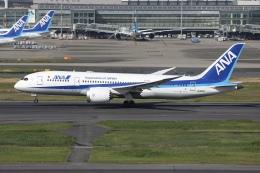 sky-spotterさんが、羽田空港で撮影した全日空 787-8 Dreamlinerの航空フォト(飛行機 写真・画像)