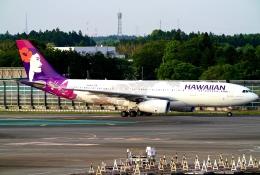 SFJ_capさんが、成田国際空港で撮影したハワイアン航空 A330-243の航空フォト(飛行機 写真・画像)
