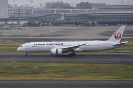pringlesさんが、羽田空港で撮影した日本航空 787-9の航空フォト(飛行機 写真・画像)
