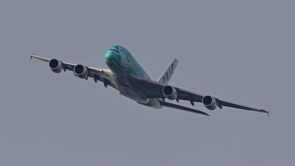 chinbariさんの全日空 Airbus A380 (JA382A) 航空フォト