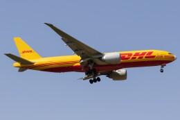 walker2000さんが、成田国際空港で撮影したサザン・エア 777-Fの航空フォト(飛行機 写真・画像)