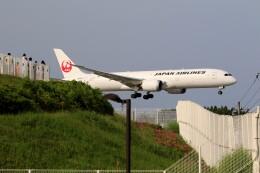 ☆ライダーさんが、成田国際空港で撮影した日本航空 787-9の航空フォト(飛行機 写真・画像)