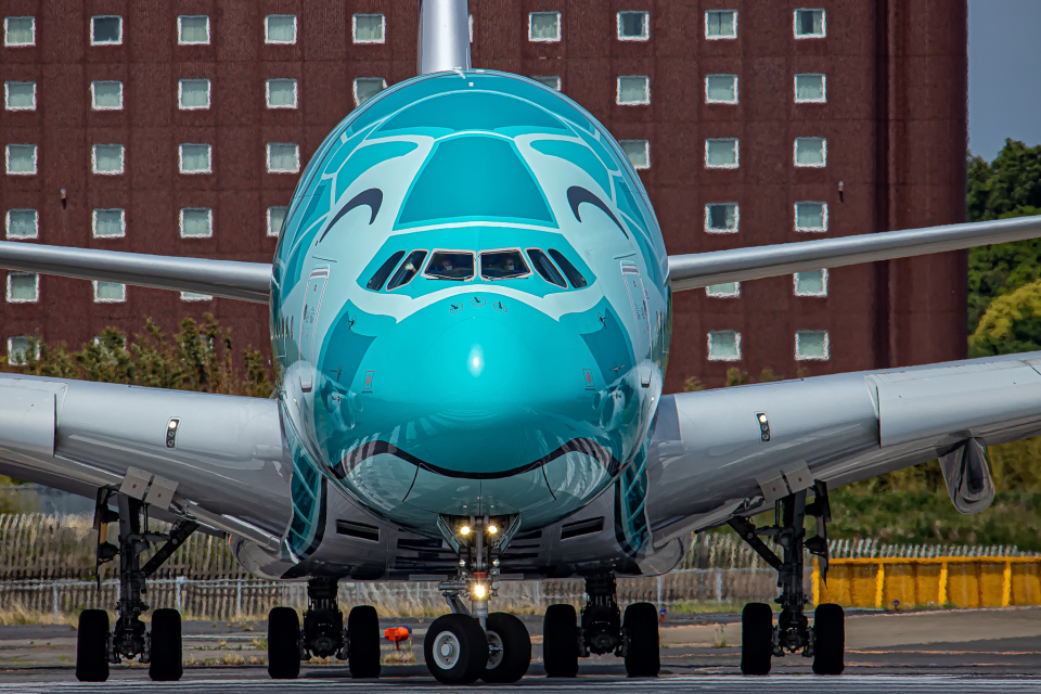 SGR RT 改さんの全日空 Airbus A380 (JA382A) 航空フォト