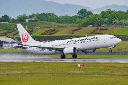 うらしまさんが、高松空港で撮影した日本航空 737-846の航空フォト(飛行機 写真・画像)
