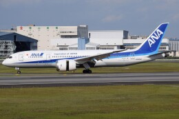 Soutaさんが、伊丹空港で撮影した全日空 787-8 Dreamlinerの航空フォト(飛行機 写真・画像)