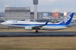 Soutaさんが、伊丹空港で撮影した全日空 737-881の航空フォト(飛行機 写真・画像)