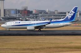 Soutaさんが、伊丹空港で撮影した全日空 737-8ALの航空フォト(飛行機 写真・画像)