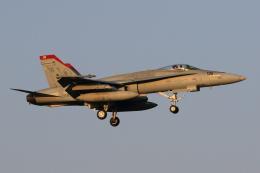 たまさんが、厚木飛行場で撮影したアメリカ海兵隊 F/A-18C Hornetの航空フォト(飛行機 写真・画像)