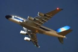 木人さんが、成田国際空港で撮影した中国南方航空 A380-841の航空フォト(飛行機 写真・画像)