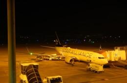 K&Kさんが、松山空港で撮影した全日空 737-881の航空フォト(飛行機 写真・画像)