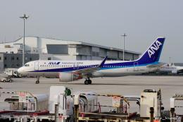 ぱん_くまさんが、羽田空港で撮影した全日空 A320-214の航空フォト(飛行機 写真・画像)