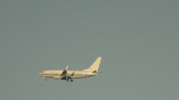 IOPさんが、茅ケ崎で撮影したアメリカ海軍 C-40A Clipper (737-7AFC)の航空フォト(飛行機 写真・画像)