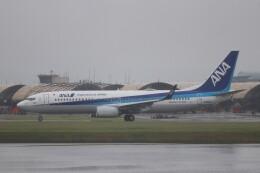 hanatomo735さんが、岩国空港で撮影した全日空 737-8ALの航空フォト(飛行機 写真・画像)
