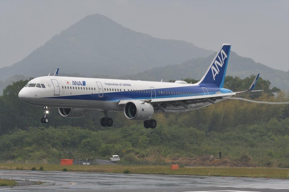 qooさんの全日空 Airbus A321neo (JA137A) 航空フォト