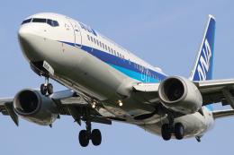 singapore346さんが、伊丹空港で撮影した全日空 737-881の航空フォト(飛行機 写真・画像)
