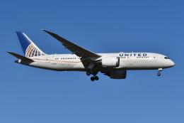 Deepさんが、成田国際空港で撮影したユナイテッド航空 787-8 Dreamlinerの航空フォト(飛行機 写真・画像)