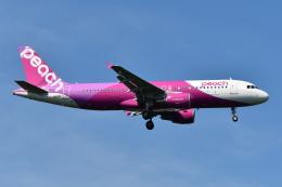 Deepさんが、成田国際空港で撮影したピーチ A320-214の航空フォト(飛行機 写真・画像)