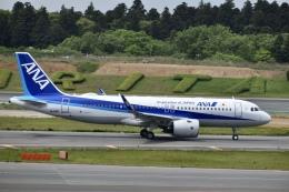 東亜国内航空さんが、成田国際空港で撮影した全日空 A320-271Nの航空フォト(飛行機 写真・画像)