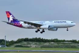 saoya_saodakeさんが、成田国際空港で撮影したハワイアン航空 A330-243の航空フォト(飛行機 写真・画像)