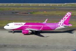 航空フォト:JA09VA ピーチ A320