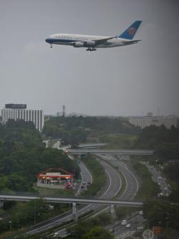 flytaka78さんが、成田国際空港で撮影した中国南方航空 A380-841の航空フォト(飛行機 写真・画像)