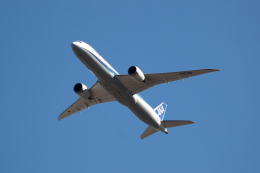 TAKAHIDEさんが、成田国際空港で撮影した全日空 787-9の航空フォト(飛行機 写真・画像)