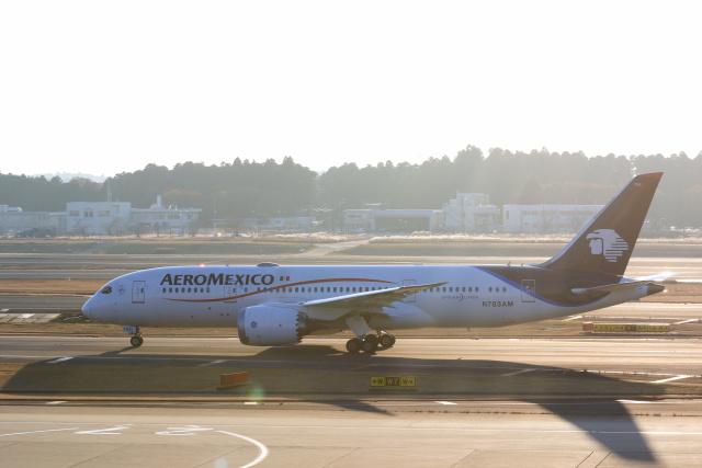 inyoさんが、成田国際空港で撮影したアエロメヒコ航空 787-8 Dreamlinerの航空フォト(飛行機 写真・画像)