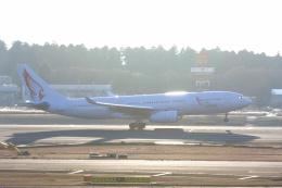 inyoさんが、成田国際空港で撮影したエア・レジャー A330-243の航空フォト(飛行機 写真・画像)
