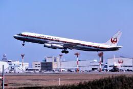 パール大山さんが、成田国際空港で撮影した日本航空 DC-8-62の航空フォト(飛行機 写真・画像)