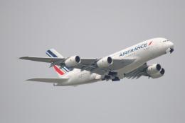 LEGACY-747さんが、成田国際空港で撮影したエールフランス航空 A380-861の航空フォト(飛行機 写真・画像)