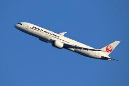 kaz787さんが、伊丹空港で撮影した日本航空 787-9の航空フォト(飛行機 写真・画像)