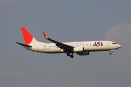 LEGACY-747さんが、成田国際空港で撮影した日本航空 737-846の航空フォト(飛行機 写真・画像)