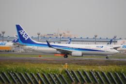 LEGACY-747さんが、成田国際空港で撮影した全日空 737-881の航空フォト(飛行機 写真・画像)
