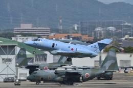 EC5Wさんが、名古屋飛行場で撮影した航空自衛隊 U-125A(Hawker 800)の航空フォト(飛行機 写真・画像)