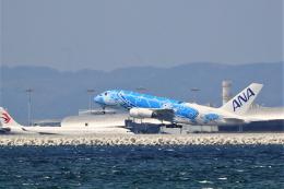 ニンバスT.Iさんが、関西国際空港で撮影した全日空 A380-841の航空フォト(飛行機 写真・画像)