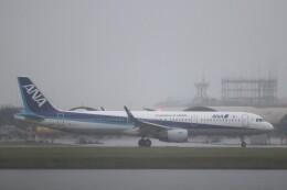 hanatomo735さんが、岩国空港で撮影した全日空 A321-211の航空フォト(飛行機 写真・画像)