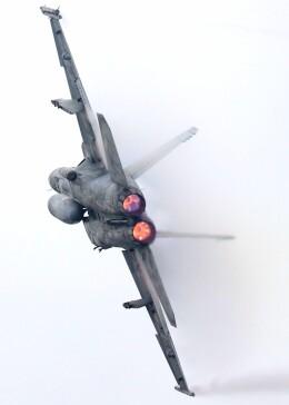 hanatomo735さんが、岩国空港で撮影したアメリカ海軍 F/A-18E Super Hornetの航空フォト(飛行機 写真・画像)