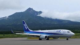 Take51さんが、利尻空港で撮影した全日空 737-8ALの航空フォト(飛行機 写真・画像)