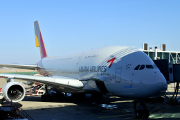 Take51さんが、仁川国際空港で撮影したアシアナ航空 A380-841の航空フォト(飛行機 写真・画像)