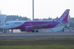 KT 327@KOJさんが、鹿児島空港で撮影したピーチ A320-251Nの航空フォト(飛行機 写真・画像)