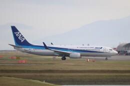 hanatomo735さんが、岩国空港で撮影した全日空 737-881の航空フォト(飛行機 写真・画像)