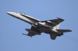 hanatomo735さんが、岩国空港で撮影したアメリカ海軍 F/A-18C Hornetの航空フォト(飛行機 写真・画像)
