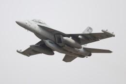 hanatomo735さんが、岩国空港で撮影したアメリカ海軍 EA-18G Growlerの航空フォト(飛行機 写真・画像)