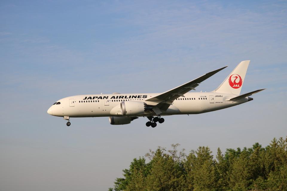 なかすぃ~さんの日本航空 Boeing 787-8 Dreamliner (JA848J) 航空フォト