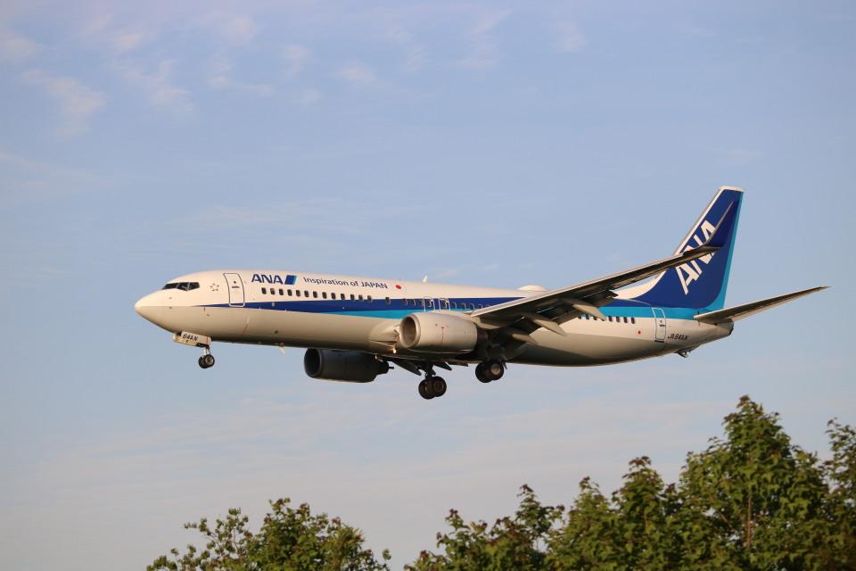 なかすぃ~さんの全日空 Boeing 737-800 (JA64AN) 航空フォト