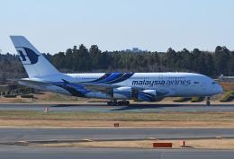 チャーリーマイクさんが、成田国際空港で撮影したマレーシア航空 A380-841の航空フォト(飛行機 写真・画像)