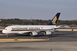 チャーリーマイクさんが、成田国際空港で撮影したシンガポール航空 A380-841の航空フォト(飛行機 写真・画像)